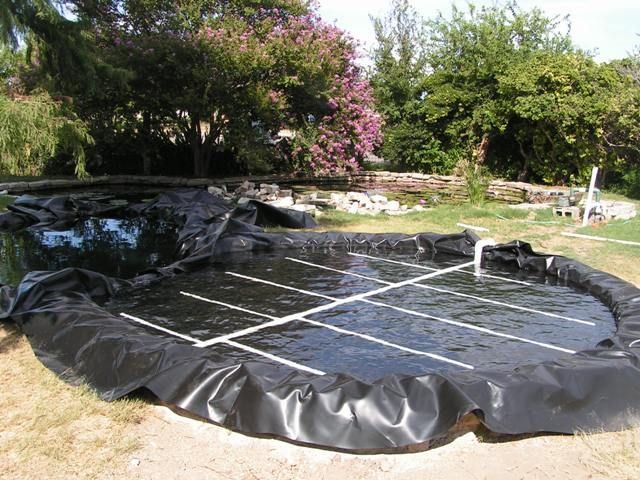 Bog filtration how to for a pond or natural swimming pool for Koi pond and swimming pool