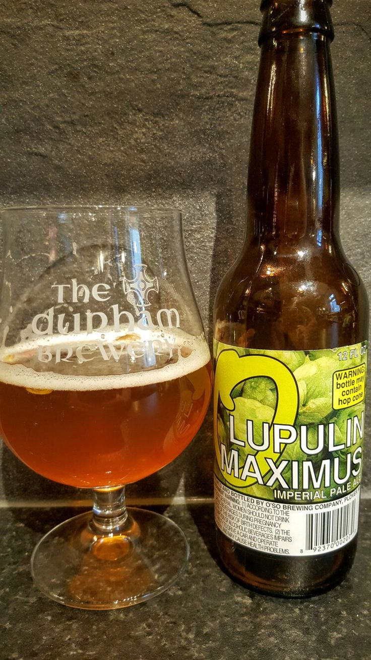 Oso Brewing Lupulin Maximus Imperial IPA. Watch the video beer review here www.youtube.com/realaleguide #CraftBeer #RealAle #Ale #Beer #BeerPorn #OsoBrewing #Oso #OsoBrewingLupulinMaximusImperialIPA #OsoLupulinMaximusImperialIPA #OsoLupulinMaximusIPA #OsoLupulinMaximus #LupulinMaximusImperialIPA #LupulinMaximusIPA #LupulinMaximus #ImperialIPA #IPA #AmericanCraftBeer #AmericanBeer