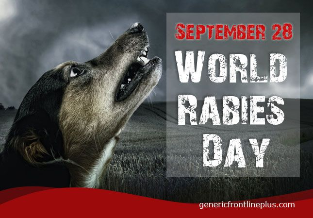 #WorldRabisDay is coming make sure you have #vaccinated your #dog to fight against the problem. http://blog.genericfrontlineplus.com/need-of-vaccination-for-dog-and-cat/?utm_source=pinterest&utm_medium=world-rabies-day-image&utm_term=world-rabies-day&utm_campaign=september-smo