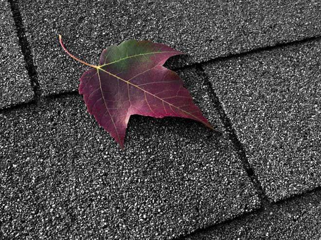 Pin On Diy Home Garden