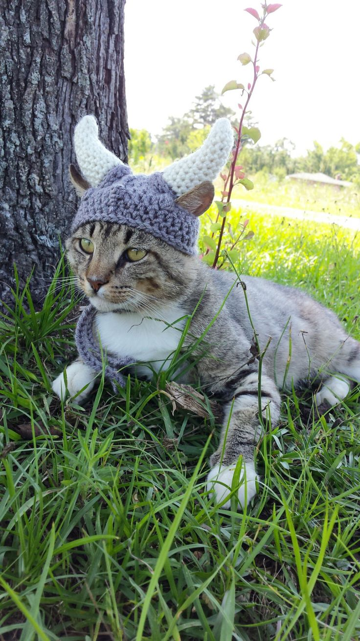 Chapeau de Viking pour chats, chapeau de Viking de chat, Viking casque de Viking de chapeaux, vêtements de chat, chat pour chats, casque de Viking de Cat, Costume de Viking pour les chats par iheartneedlework sur Etsy https://www.etsy.com/fr/listing/194722699/chapeau-de-viking-pour-chats-chapeau-de