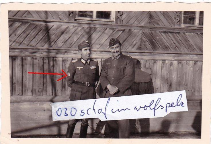 comandante del español pz. taria. Abt. división azul azul div. INF 250