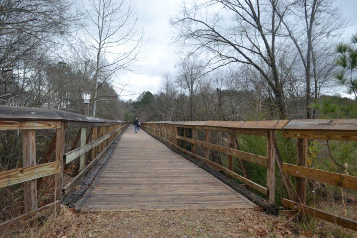 8. Hit the Palmetto Trail for some walking, hiking or biking.