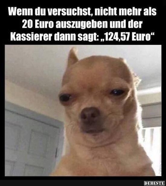 Wenn du versuchst, nicht mehr als 20 Euro auszugeben und.. | Lustige Bilder, Sprüche, Witze, echt lustig