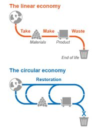 Image result for circular economy diagram graphic