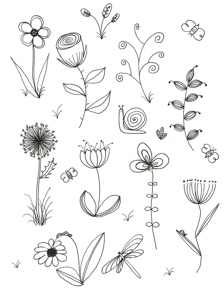 Simple Line Drawing Of Flower : Best easy flower drawings ideas on pinterest