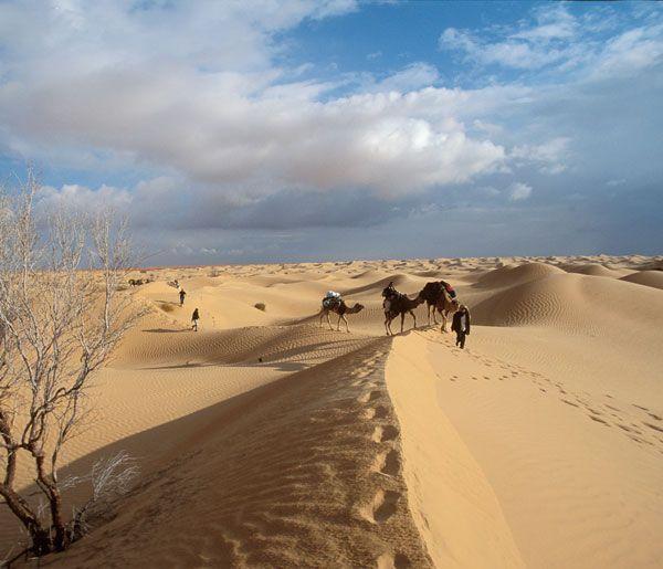 Sous le désert du Sahara gisent de gigantesques nappes d'eau. Les prélèvements anthropiques et naturels représentent plus du double des apports. © V. Simonneaux, IRD