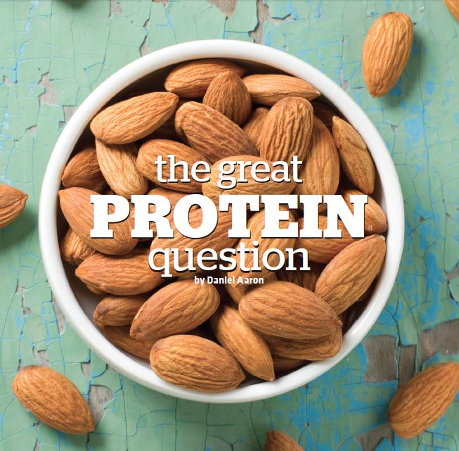 THE GREAT PROTEIN QUESTION