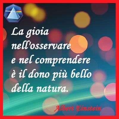 """""""La gioia nell'osservare e nel comprendere è il dono più bello della natura."""" - Albert Einstein  #einstein #citazioni #quotes #lauragipponi"""
