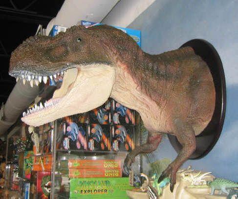 12 Best Dinosaur Images On Pinterest Cute Dinosaur