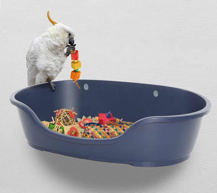 Bolt a plastic dog bed to a wall, use as a toy / foraging box for large parrots.