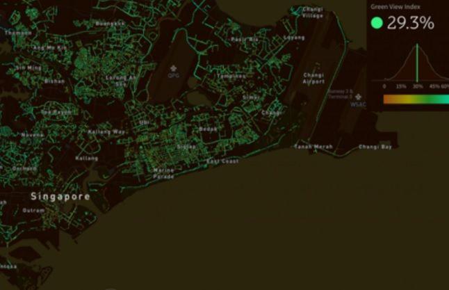 Una sperimentazione per misurare la quantità di alberi in 17 città nel mondo – Nicola Noe