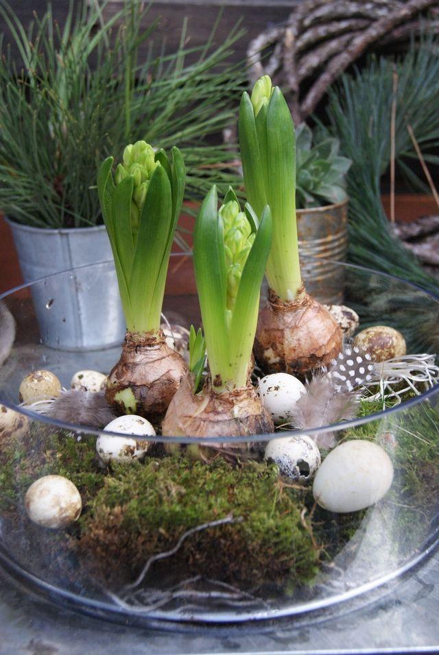 De eerste lente boodschappers  – Basteln