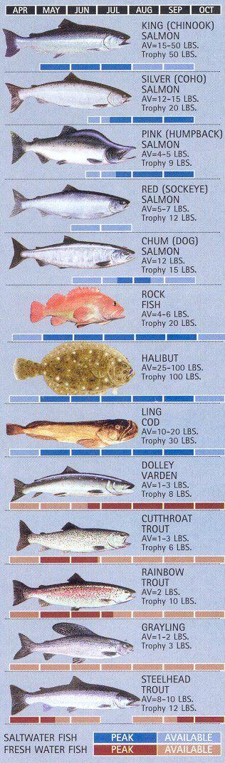 Ketchikan Fishing Calendar - Ketchikan, Alaska  http://www.sweetenufcharters.com/