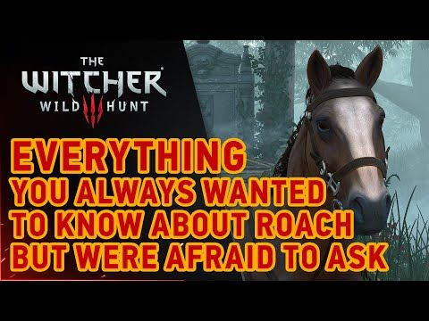 The Witcher 3: Wild Hunt - Roach - YouTube