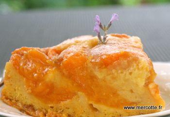Gâteau fondant acidulé à l'abricot