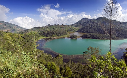 Dieng Plateau, is a marshy plateau that forms the floor of a caldera complex on the Dieng active volcano complex, and is located near Wonosobo, Central Java, Indonesia.
