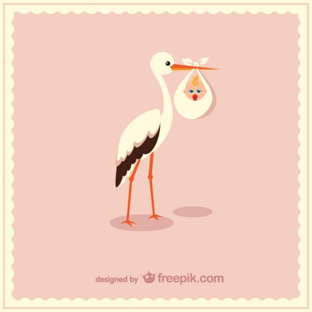 Stork Carrying Cute Baby Free Vector