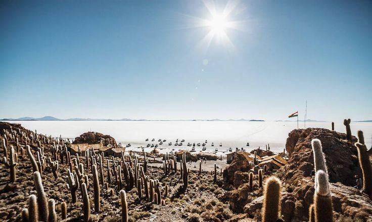 Isla del Inca Salar de Uyuni  . #bolivia .  #mountains #saltlake #uyuni #southamerica #travel #beautifuldestinations #awesomeearth #wanderlust #getlost #nakedplanet #visitsouthamerica #naturelovers  #landscape #letsgosomewhere #keepexploring #ourplanetdaily #discoverearth #travelphoto #igtravel #igersspain #isladelinca #agameoftones #wonderfulplaces #visitbolivia #cactus #destinationearth #visitbolivia