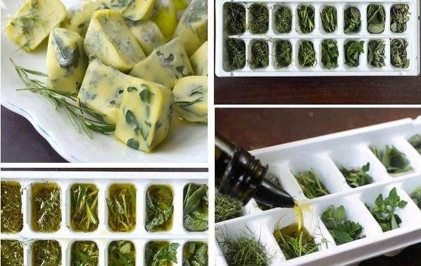 conservare le erbe aromatiche per tutto l'inverno in modo pratico, congelare essiccare il rosmarino basilico menta erba cipollina maggiorana salvia