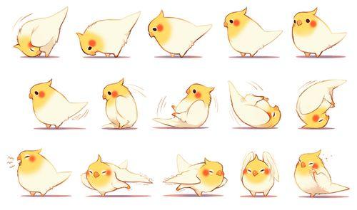 AWWWWWW! What a cute little bird!