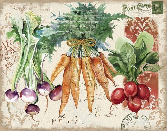 find this pin and more on frutas verduras vintage by