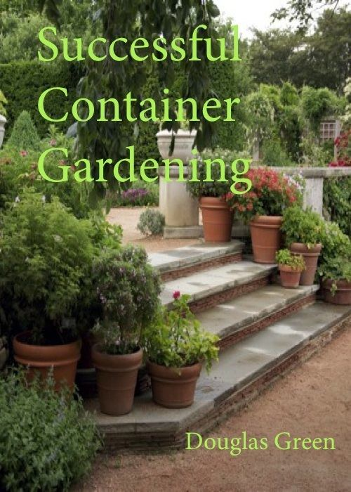 The seven container gardening basics every gardener should - Container gardening basics ...
