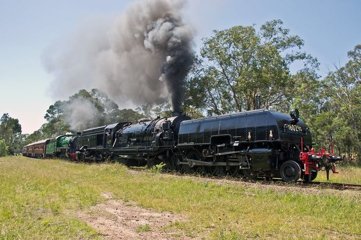 NSWGR Beyer Garratt 6029 'City of Canberra' and NSWGR 3642 double head up Thirlmere bank. 1/3/15