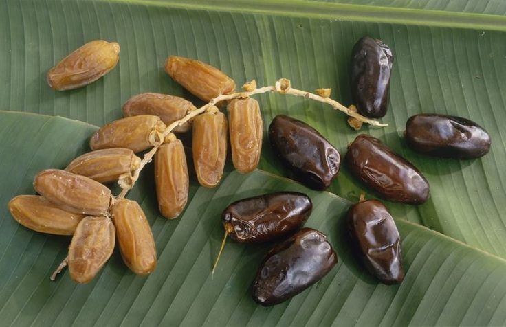 Calories in Dates and Their Health Benefits