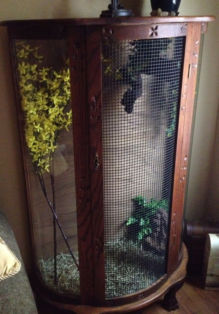 Indoor Finch Aviary