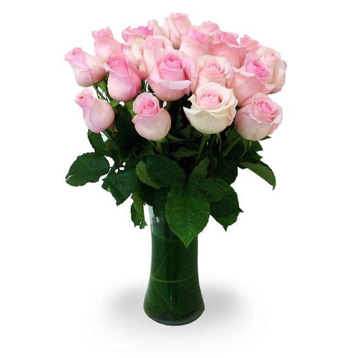 Delicadas rosas ecuatorianas color rosadas. lo puedes solicitar en www.floreriasumonte.cl categoria floreros.