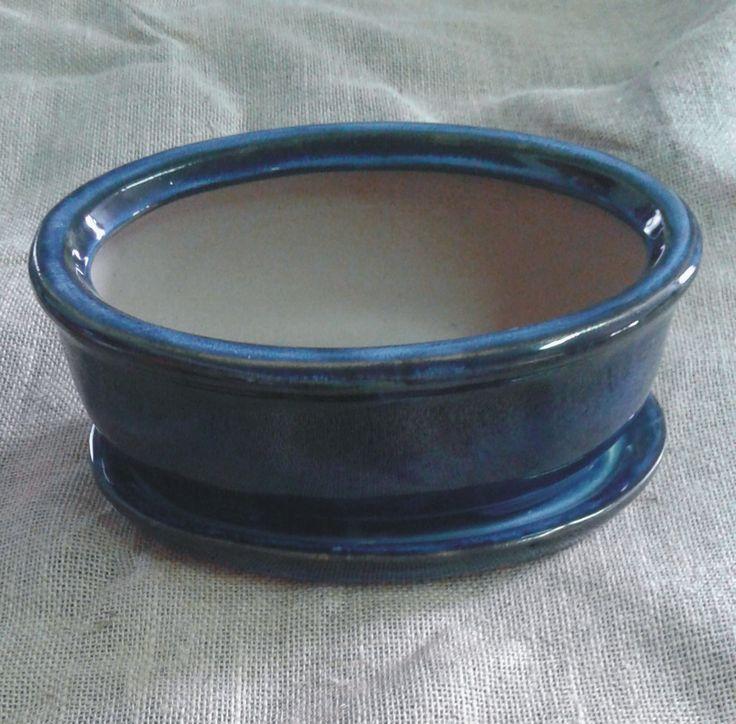 maceta bonsai azul