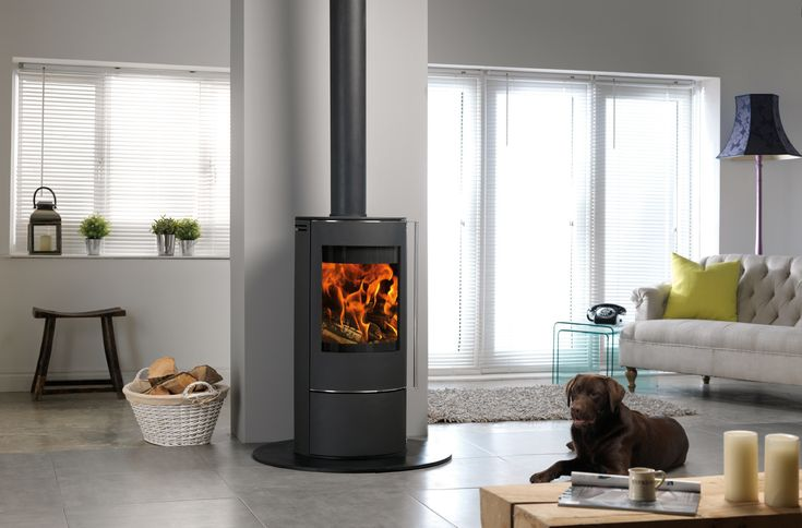 solis-stove-with-dog-1017-65335.jpg 1,553×1,023 pixels
