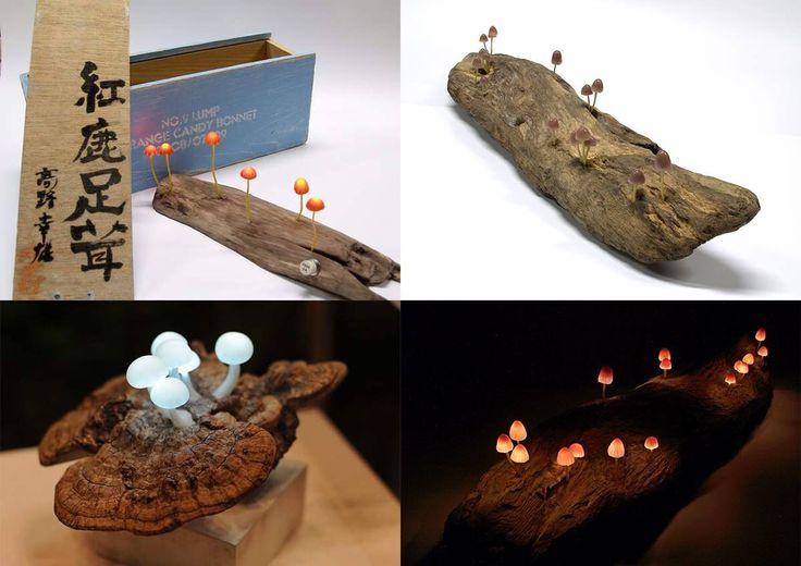 Awesome mushroom inspired lamps by Yukio Takana