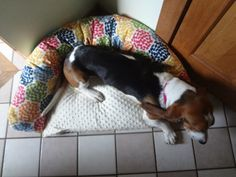 Bolster dog bed tutorial   (Hardly Housewives)