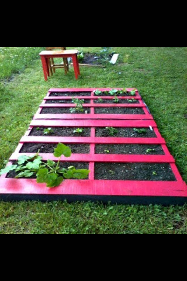 Small garden using pallets!!! Yes!!