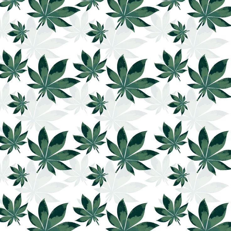 #pattern #patterdesign #design #marihuana #leaf #패턴 #패턴디자인 #잎 #잎파리 #마리화나 #패턴이미지 #patternimage pattern,patterdesign,design,marihuana,leaf,패턴,패턴디자인,잎,잎파리,마리화나,패턴이미지,patternimage