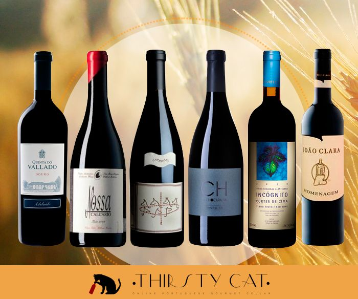 Travel Portugal North to South with this premium red wine pack! It's a great chance to you try different flavors from this sunny country, compare and rate them. :) http://www.thirsty-cat.com/product/6x-red-wines-north-south-pack