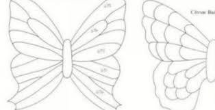 """Résultat de recherche d'images pour """"papillon bouteille plastique"""""""