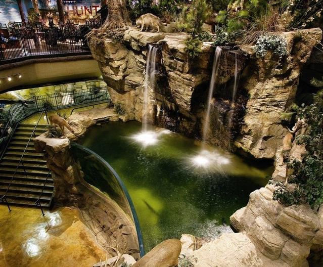 Bass pro shops fish tank i want a big indoor fishing pond for Bass fish tank