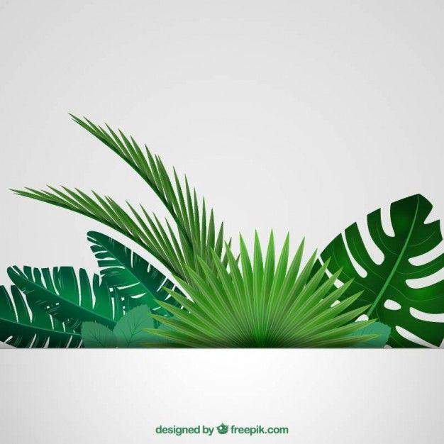 Folhas tropicais fundo Vetor grátis                                                                                                                                                                                 Mais
