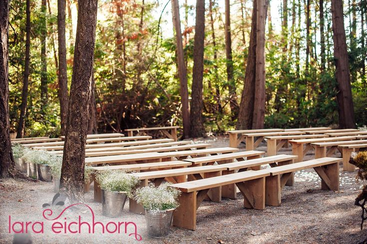 Forest Ceremony space includes benches & setup -  Photo: Lara Eichhorn Photography