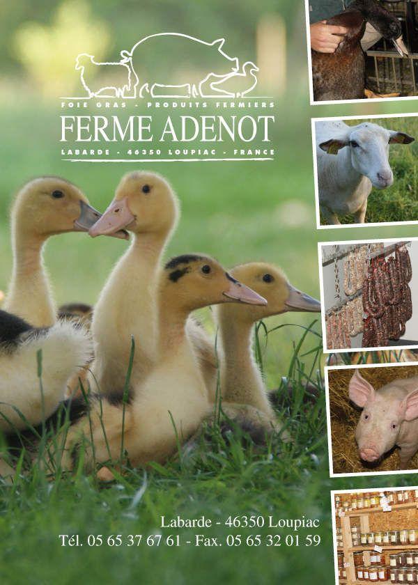 La ferme Adenot