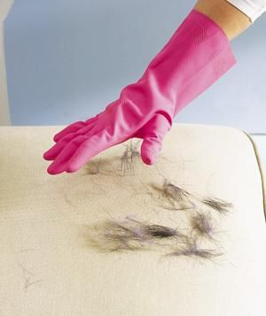 A quick way to clean pet hair: Damp a rubber glove and run your hand over hair-covered upholstery. The hair will cling to the glove, not the sofa.
