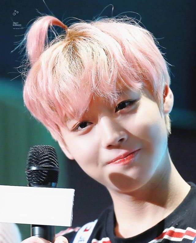 Jihoon apple hair ver.