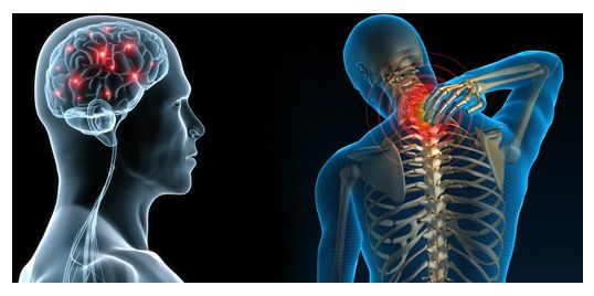 Chiropractors In My Area Suggest Spinal Manipulation For Low-Back Pain I learned about the benefits of chiropractic treatment from a medical journal. Hence, I started to look for best chiropractors in my area and their methods of operation.