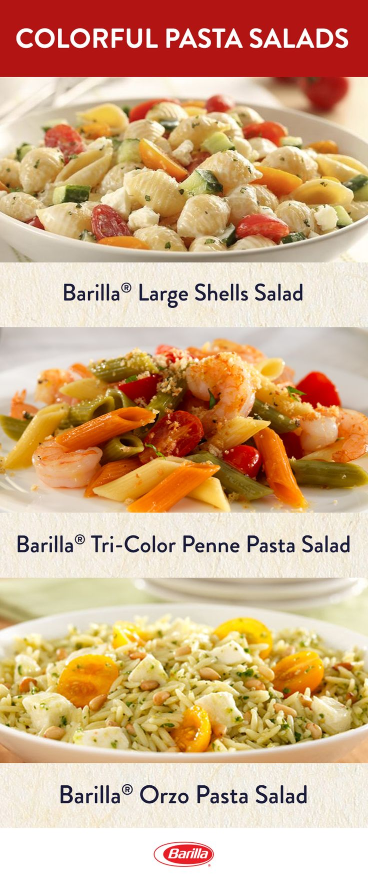 Celebrate National Picnic Month with one of our favorite pasta salad recipes - filled with fresh veggies, meat and cheese! From gluten free, to tricolor, you will find some of the tastiest summertime salads when you save this pin.