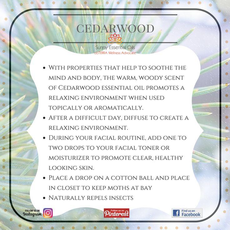 Cedarwood Essential Oil info