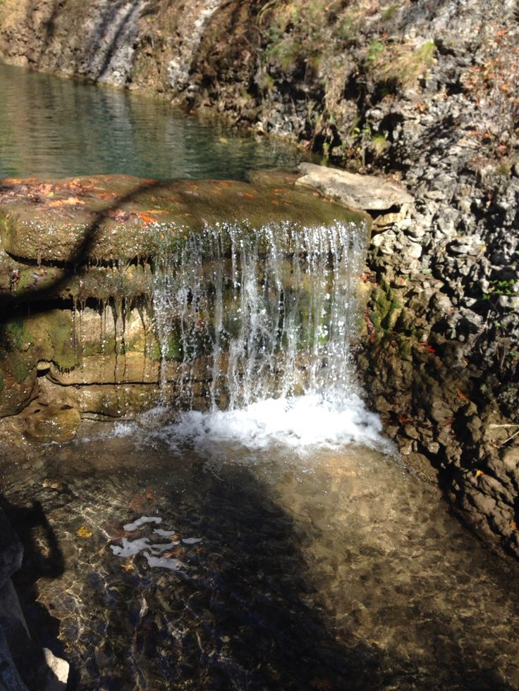17 best images about big cedar lodge dogwood canyon on for Dogwood canyon