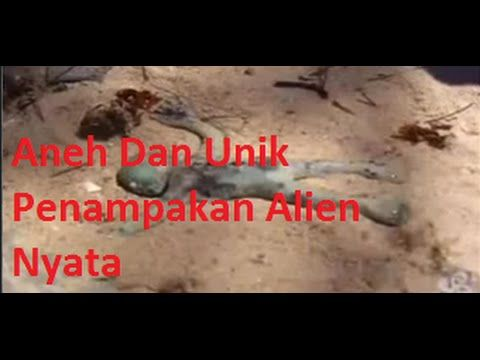 Aneh Dan Unik, penampakan alien, Alien atau dalam bahasa Indonesia disebut makhluk asing, adalah istilah serapan yang dalam bahasa Inggris berarti orang